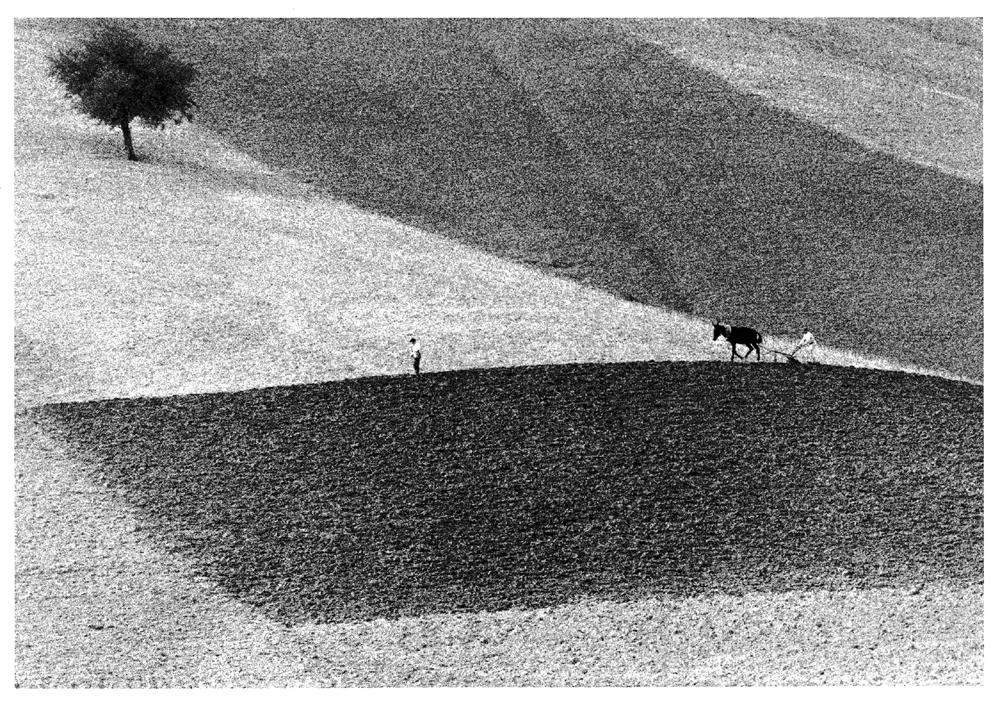 Gianni-Berengo-Gardin-Toscana-1958